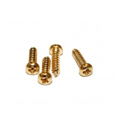 Schaller LK-screw 6019