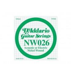 D-Addario NW026